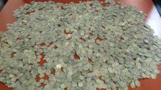Malatya'da  3560 adet tarihi eser-sikke ele geçirildi