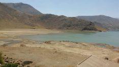 Malatya Çat Barajı Kuruyor…Malatya Battalgazide Kayısı Ağaçları Kuruyor