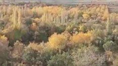 Horota Vadisi Projesi İptal Edildi, fakat Malatya Büyükşehir Belediyesi, Yeşili yok etmek için İmar Şeklini Değiştiriyor.