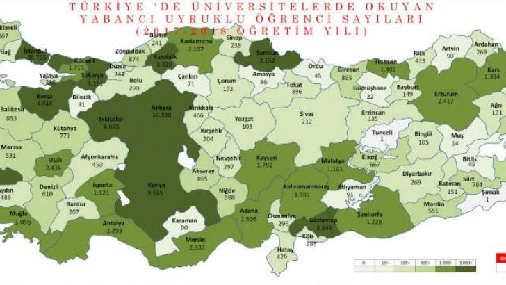 Malatya'da 1161 Yabancı Uyruklu Üniversite Öğrencisi Var
