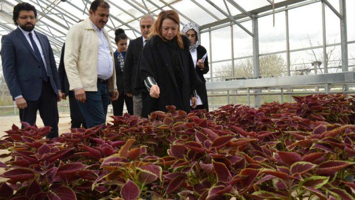 """Rektör Prof. Dr. Karabulut; """"Bilimsel destekli tarımsal üretimi önemsiyoruz"""""""