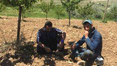 Bugün 14 Mayıs çiftçiler günü…Malatya'nın Akçadağ ilçesi başta olmak üzere bir çok noktada çiftçiler icraya verildi.