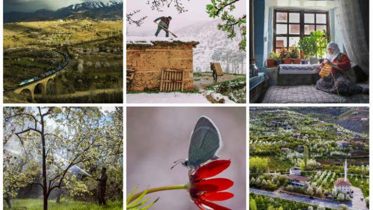 'Yeşilyurt Çiçek Açtı' isimli ulusal fotoğraf yarışmasında dereceye giren eserler belli oldu