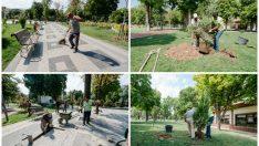 Malatya Büyükşehir Belediyesi tarafından Hürriyet Parkına tüplü fidanların dikimi yapıldı