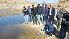 Su Kaynaklarının Balıklandırılması' projesi kapsamında Yeşilyurt Belediyesinin destekleriyle 10 bin adet pullu sazan bırakıldı