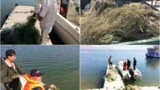 Av yasağına uymayan; Battalgazi'de amatör balıkçılık yapan 56 kişiye