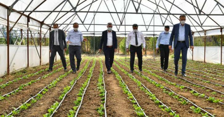 Bilinçli Tarım Uygulamalarıyla, Bölgemize Örnek Oluyoruz