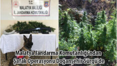 Malatya Jandarma Komutanlığı'ndan  Şafak Operasyonu Doğanşehir Sürgü'de